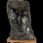 Joël A. Prévost | Sculpture Nude Male Torso
